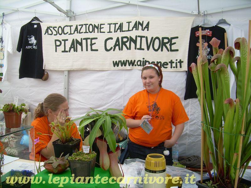 Meeting ufficiale aipc a mira ve 19 20 for Piante carnivore prezzi